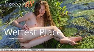 Wettest Place