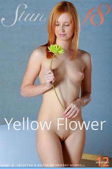 Stunning18 - Nikky B - Yellow Flower by Antonio Clemens