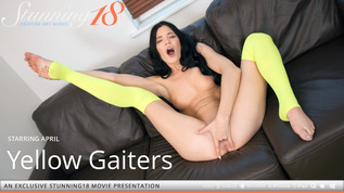 Yellow Gaiters