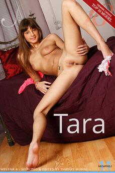 Stunning 18 Tara Melena A