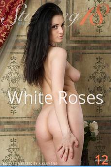 Stunning18 - Marina H - White Roses by Antonio Clemens