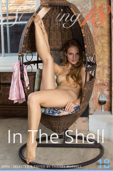 In The Shell