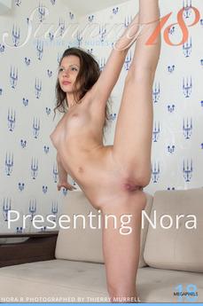 Presenting Nora