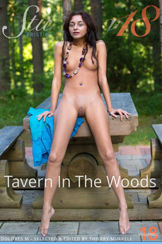 Tavern In The Woods