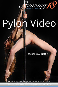 Pylon Video