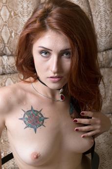 Alietta